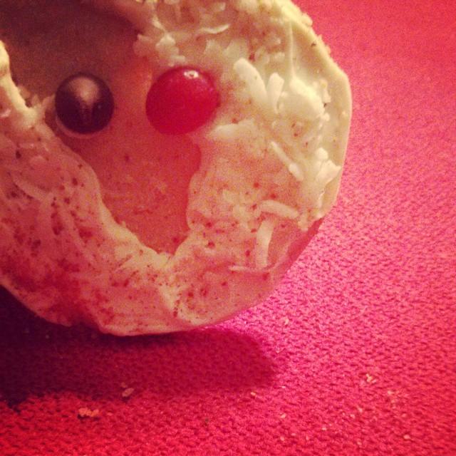 The Story of the Garrett Christmas