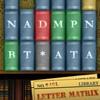 Letter Matrix