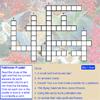 Pollinator Puzzle