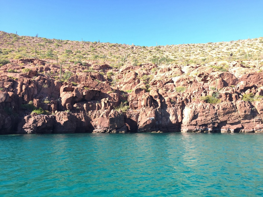Red cliffs, cacti, and bright blue water at El Cardoncito // november 2014