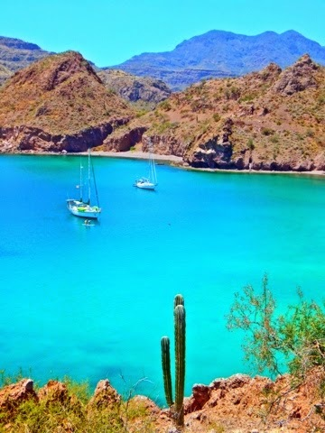 Right up there with Los Gatos (which is close by) Bahia Agua Verde is one of our top cruising destinations in the Sea of Cortez