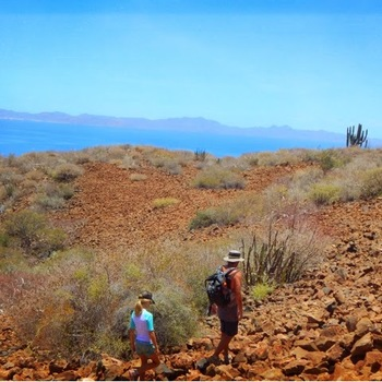 Hike to the top of Isla Coronado...