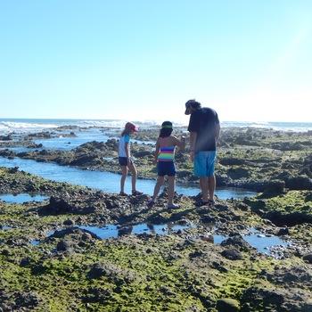 Awesome tide pools at Punta Abreojos