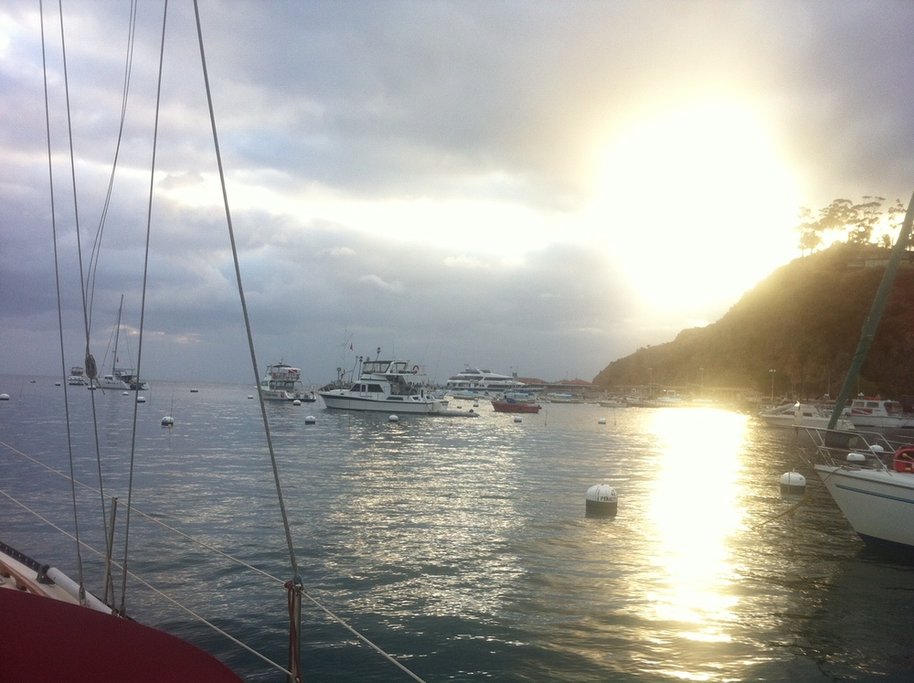 Getting ready to leave Catalina island from avalon harbor in the morning.