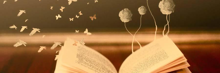 Image result for poeziya