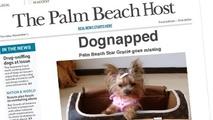 Small palm beach host