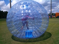 Small crazy games hamster ball6