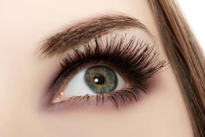 Social eyelash and eyebrow