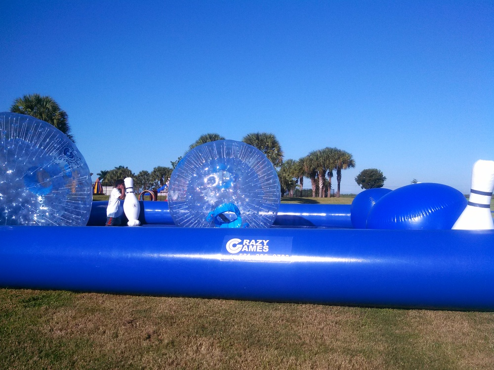 Crazy games hamster ball palm beah county parks