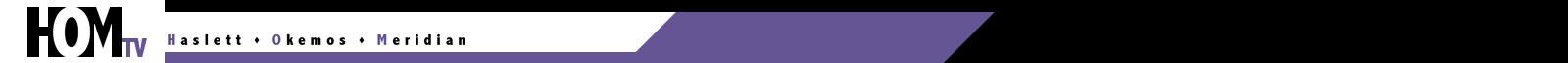HOMTV logo