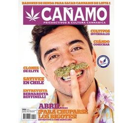 Revista Cañamo 84
