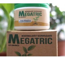 Megatric