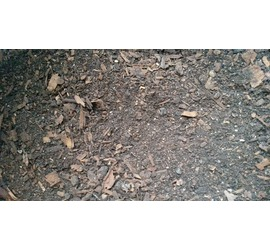 Compost 20L