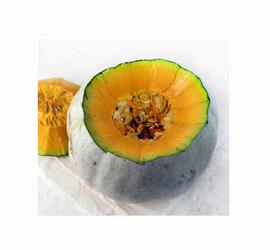 Zapallo Camote (semilla)
