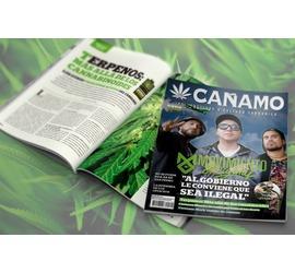 Revista Cañamo edi. 127