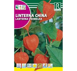 Semilla Linterna China (Lanterna Vermelha)