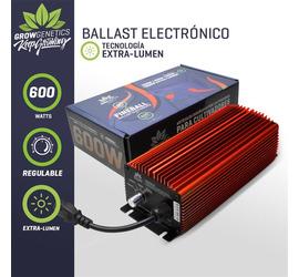 Balastro Electrónico Regulable 600W Fireball