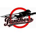 Small panther logo  1