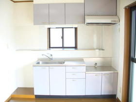 第2細井ハイツ 101号室のキッチン