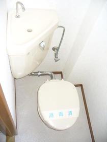 第2細井ハイツ 101号室のトイレ
