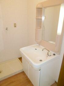 コーポ秋山2 202号室の洗面所