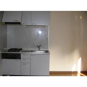ソレーユみなみ 202号室のキッチン