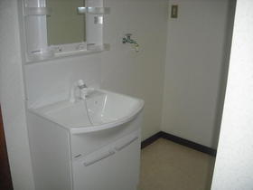 テラス瀬谷 201号室の洗面所