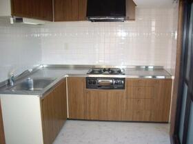 ロイヤルガーデン 401号室のキッチン