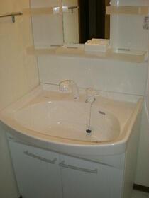 ロイヤルガーデン 401号室の洗面所