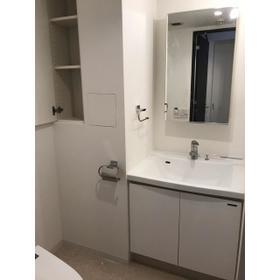 ステラメゾン学芸大学 312号室の洗面所
