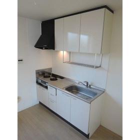 ローラル二子玉川 202号室のキッチン