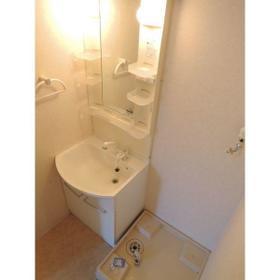 ローラル二子玉川 202号室の洗面所