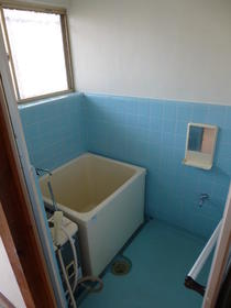 白樺荘 202号室の風呂