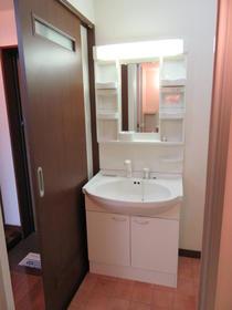 ルミナ 306号室の洗面所