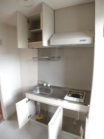 ヴィラガーデニアB 102号室のキッチン