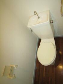 グラントゥール松崎 302号室のトイレ