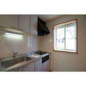 プレ西新宿 0101号室のキッチン
