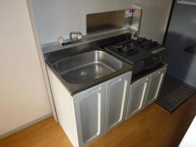 グリーンヒル五番館 203号室のキッチン