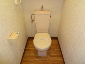 ホワイトリバー駅前 601号室のトイレ