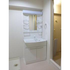 レジデンス武蔵野 0304号室の洗面所