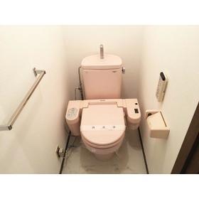 ロイヤルエリア大成 301号室のトイレ