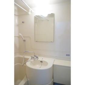ルーニィ平町 0210号室の洗面所