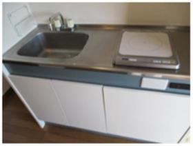 アルページュ花崎 205号室のキッチン