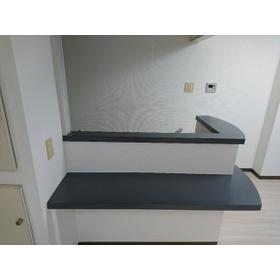 ティアラ南 201号室のキッチン