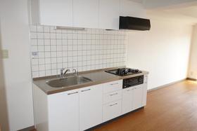 メゾン・ド・シノ 502号室のキッチン