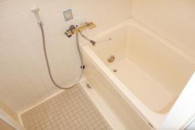 メゾン・ド・シノ 502号室の風呂