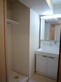 ヒルズ・ヴィラ 102号室の洗面所