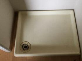 ドリームハイツ澤 3号棟 308号室の洗面所