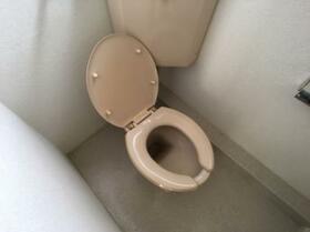 ドリームハイツ澤 5号棟 502号室のトイレ