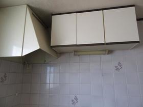 スカーレットハイツ 202号室のキッチン